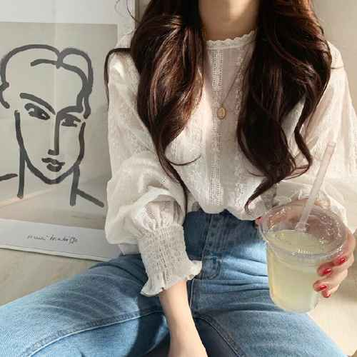 Blouses 2019 elegant women blouses lantern sleeves o neck lace
